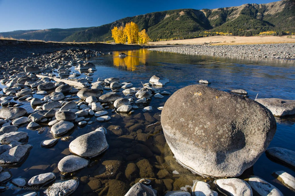 Lamar River Autumn Morning