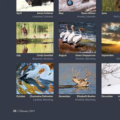 SandhIll Cranes Wyoming Wildlife 2016 Calendar