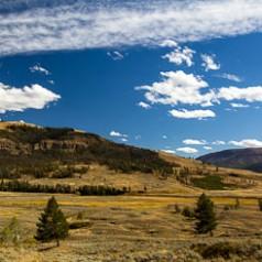 Soda Butte Creek Landscape