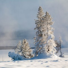 Winter Sunrise at Yellowstone Lake