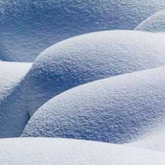 Snow Bum