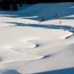 Cascade Meadows